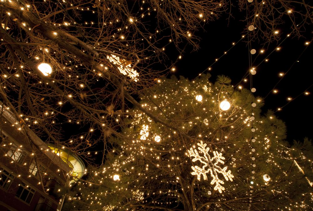 2014 Charlotte Area Parades and Tree-Lightings